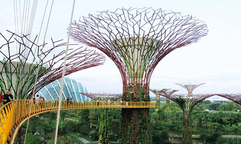 Gardens By The Bay, Teduhnya Meeting Di Kebun Buatan