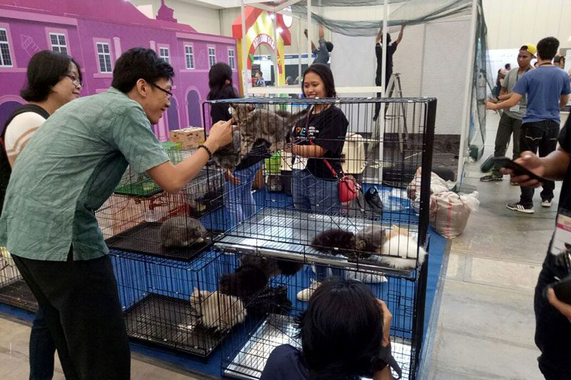 Indonesia International Pet Expo