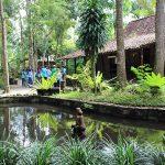 Desa Wisata Sleman, Wisata Tidak Perlu Mahal