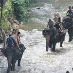 Ekowisata di Kaki Sumatera