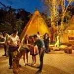 Night Safari Tawarkan Makan Malam Tak Terlupakan