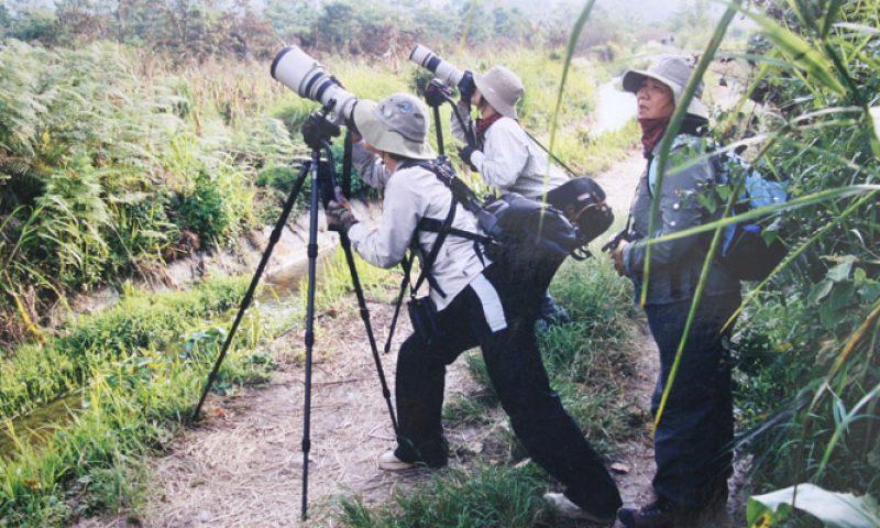 Menyusuri Lore Lindu, Mengagumi Dunia Bawah Air Togean