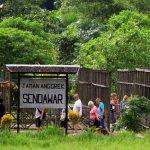 Kementerian Pariwisata Targetkan 100.000 Homestay Desa Wisata