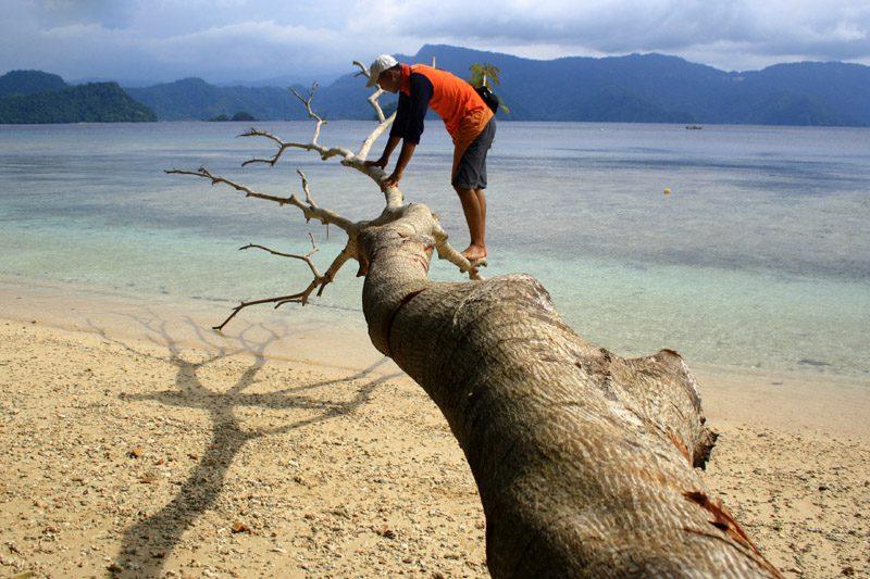destinasi wisata pantai harlem