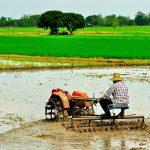 Indonesia Agriculture Week 2018 Dukung Kedaulatan Pangan Indonesia