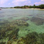 Dari 10, Akhirnya Hanya 4 Bali Baru yang Diprioritaskan