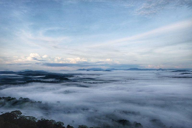 Bukit Bolau Tanjung Puting