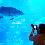 Obyek Wisata Buatan Belum Laku di Kalangan Turis Asing