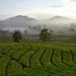 Kabupaten Bandung Diusulkan Jadi KEK Pariwisata