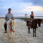 Check In Diantar Kuda di Ergon Pandawa Gili Trawangan