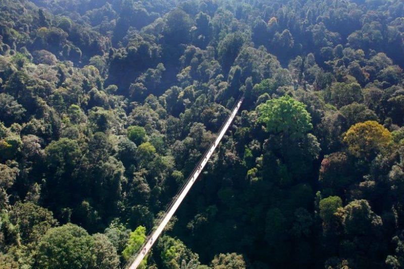 suspension bridge Situ Gunung