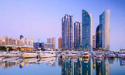 Menikmati Bisnis dan Liburan di Busan