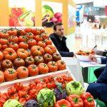 Buah Indonesia Dipamerkan di Fruit Logistica