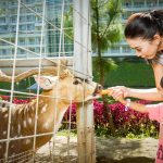 Lima Fasilitas Anak-Anak Terbaik di Le Eminence Hotel Puncak