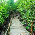 Tujuh Hidden Gems yang di Pulau Jawa