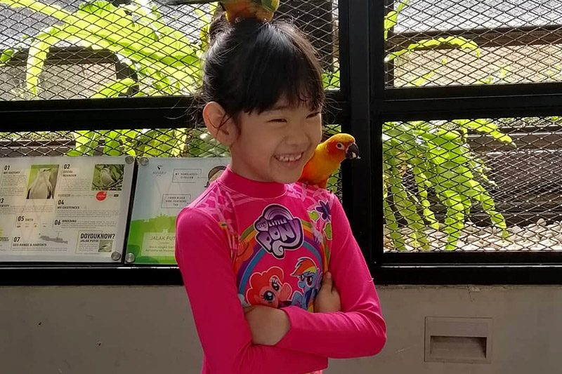 bird talk Aviary Bintaro