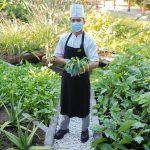 Sustainability Food Festival Dukung Gerakan Keberlanjutan Lingkungan