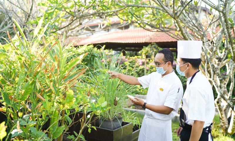 Dukung Keberlanjutan Lingkungan, Grand Hyatt Bali Kurangi Konsumsi Energi dan Air