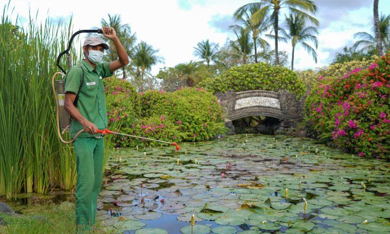 Grand Hyatt Bali Manfaatkan Limbah Makanan Untuk Pupuk Kompos